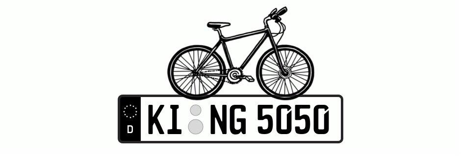 Fahrradträger Kennzeichen 5 Fakten Die Du Noch Nicht Wusstest